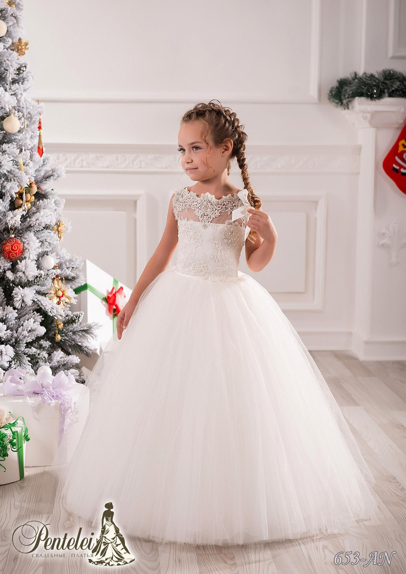 Jewel Applique Beaded Ball Gown Net Baby Girl Birthday