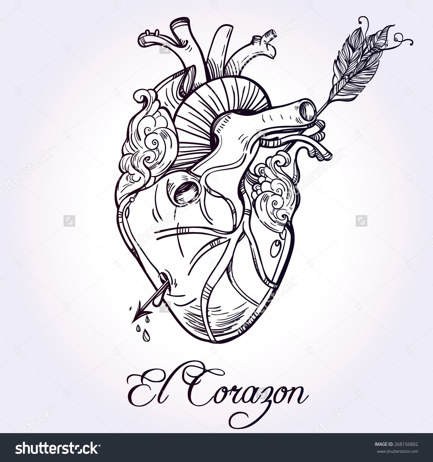 sketched hand drawn line art beautiful human heart with arrow el