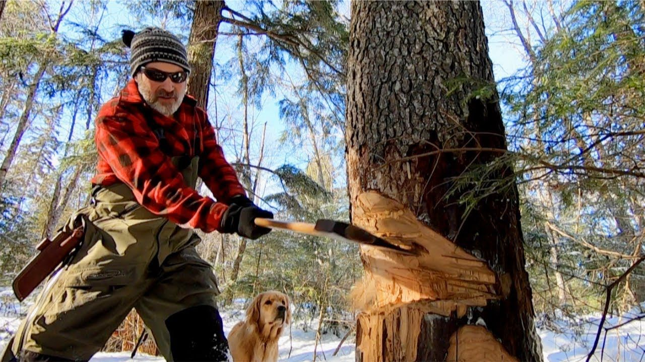 Chopping Down a Cherry Tree with an Axe for The Loft of