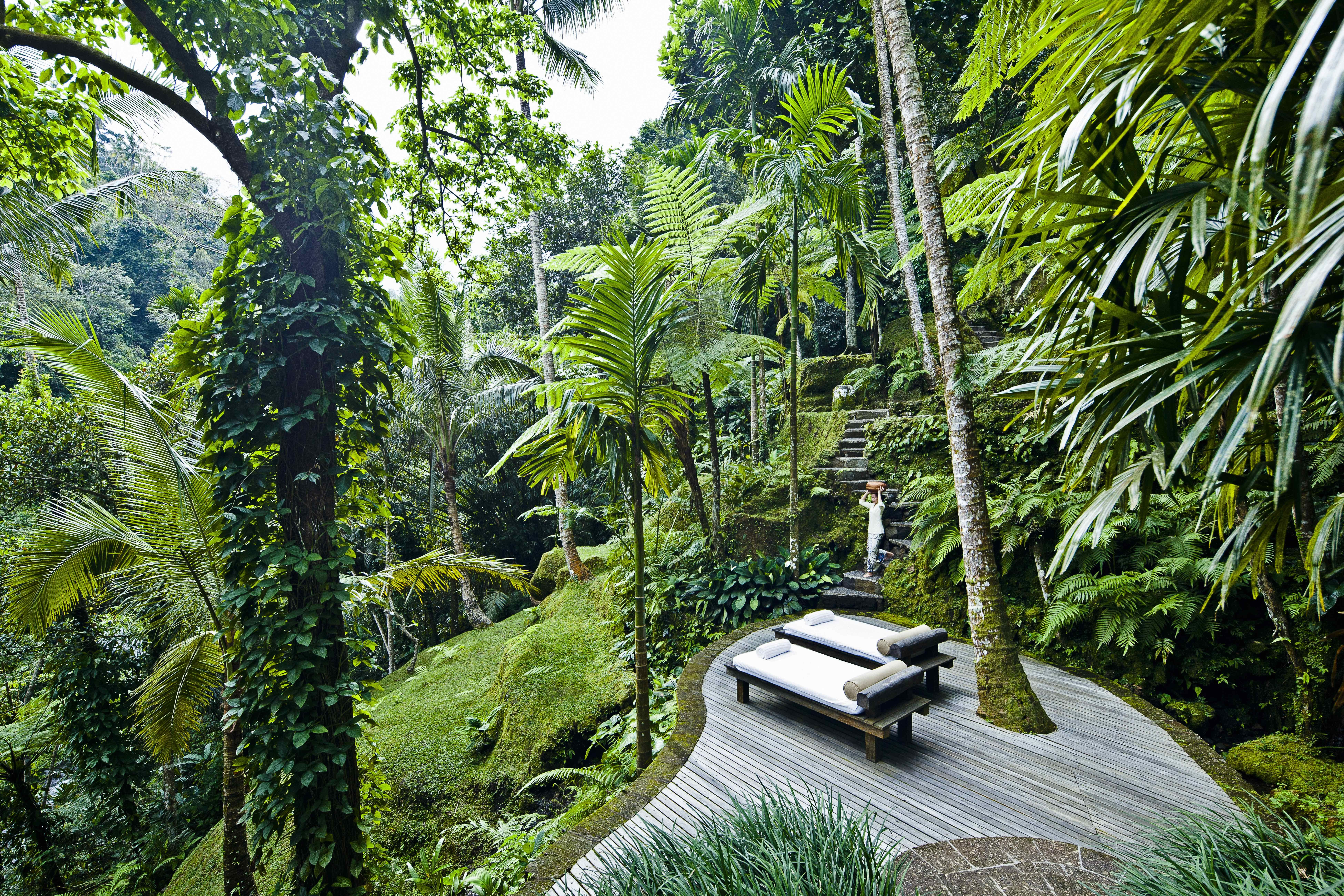 Epingle Par Haul Guadeloupe Sur Jardin Exterieur Maison Bali