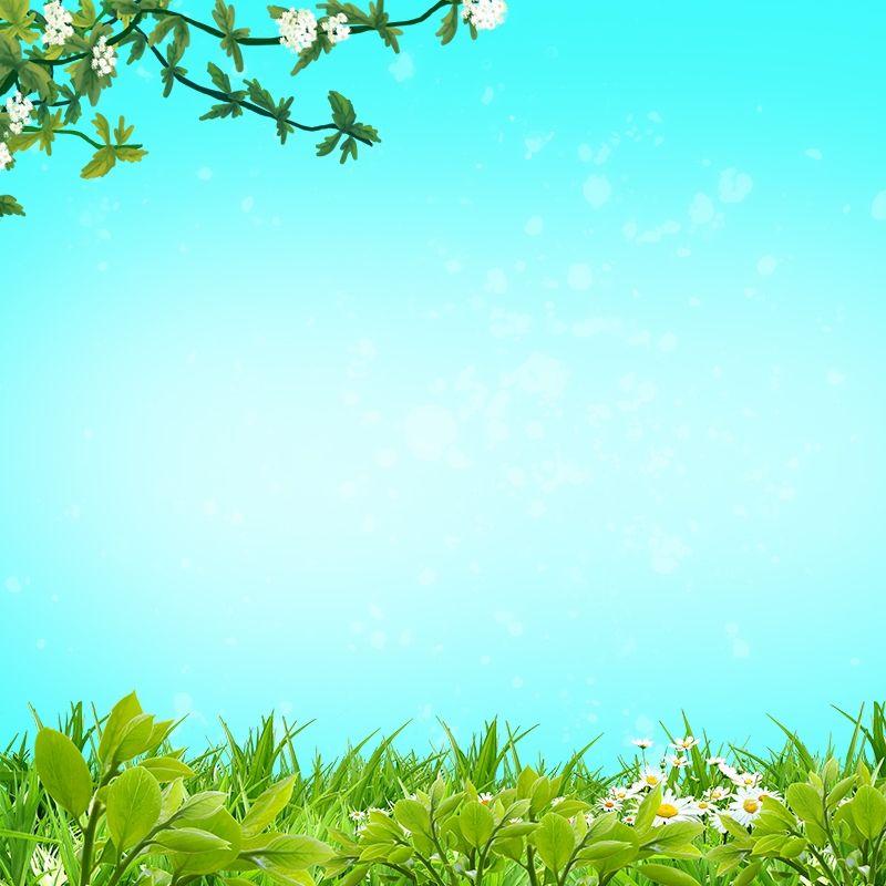 خلفية خضراء صغيرة جديدة شخصية سيد خلفية الصورة الرئيسية Islamic Pictures Plants Background