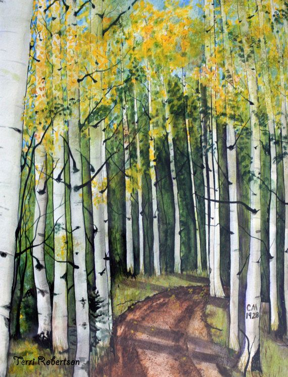 Detail Of Aspen Trees Watercolor By The Artist Waitsel Http