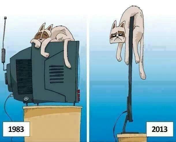 Früher war alles besser... Zumindest für diese Katze ;-)