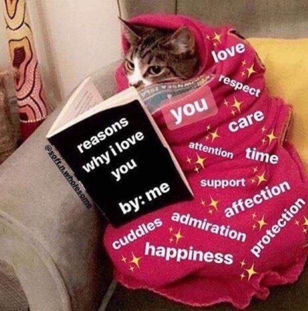 Merry Christmas Everyone Cute Love Memes Love Memes Wholesome Memes