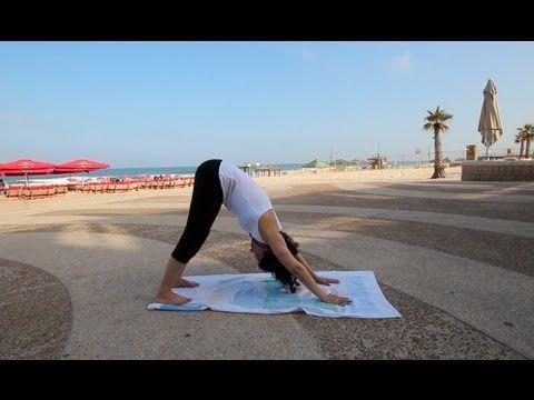 pinerica lang on yoga  yoga sun salutation yoga