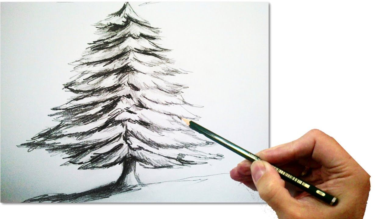How To Draw A Realistic Christmas Tree With Pencil Draw Step By Step Christmas Tree Drawing Realistic Christmas Trees Christmas Tree Sketch