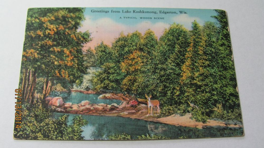 SCENE ON GOLDEN LAKE WISCONSIN WI 1921 POSTCARD 667 | eBay