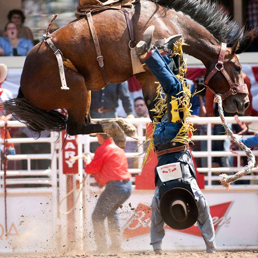 California rodeos