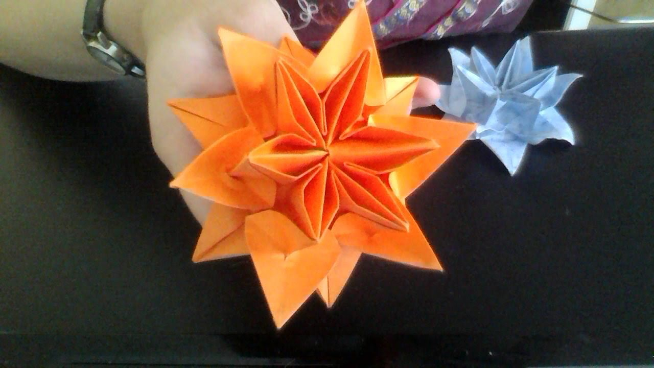 Origami Lotus Water Lily Flower Instructions Origami Flowers