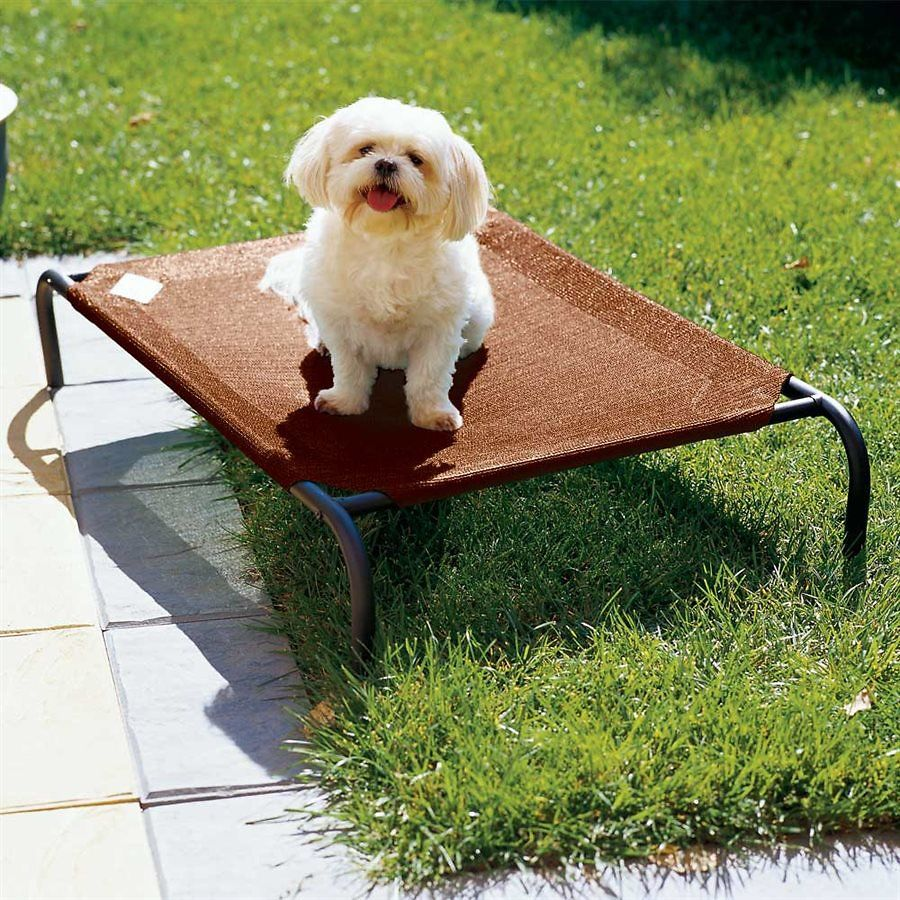 Coolaroo SteelFramed Terracotta Elevated Pet Bed, Large