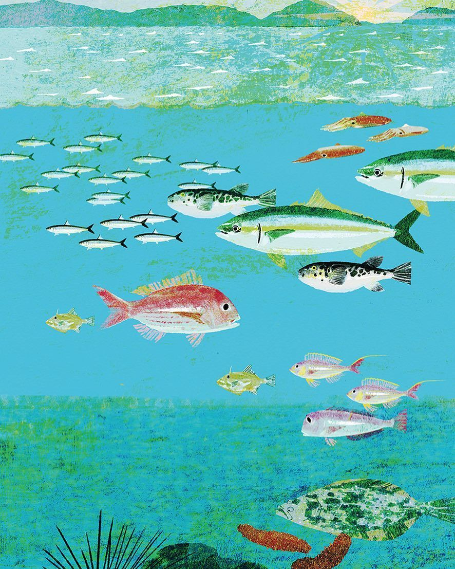 長崎の美味い魚 #illustration #illustrator #tatsurokiuchi #art