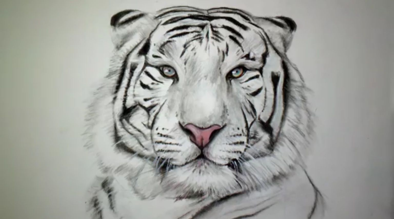 Pingl par ayla sur dessins comment dessiner un tigre dessin et dessin tigre - Comment dessiner un tigre ...