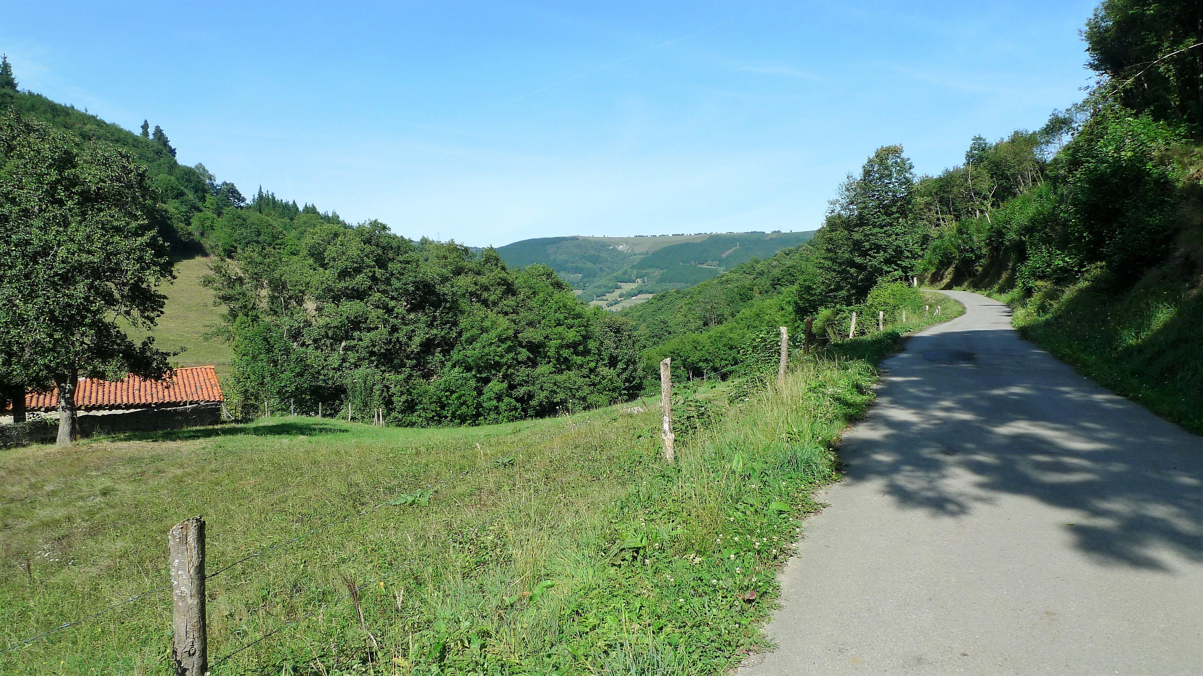 Camino de Fresnedo (Allande)
