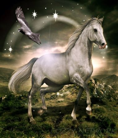 41+ Horse fantasy info