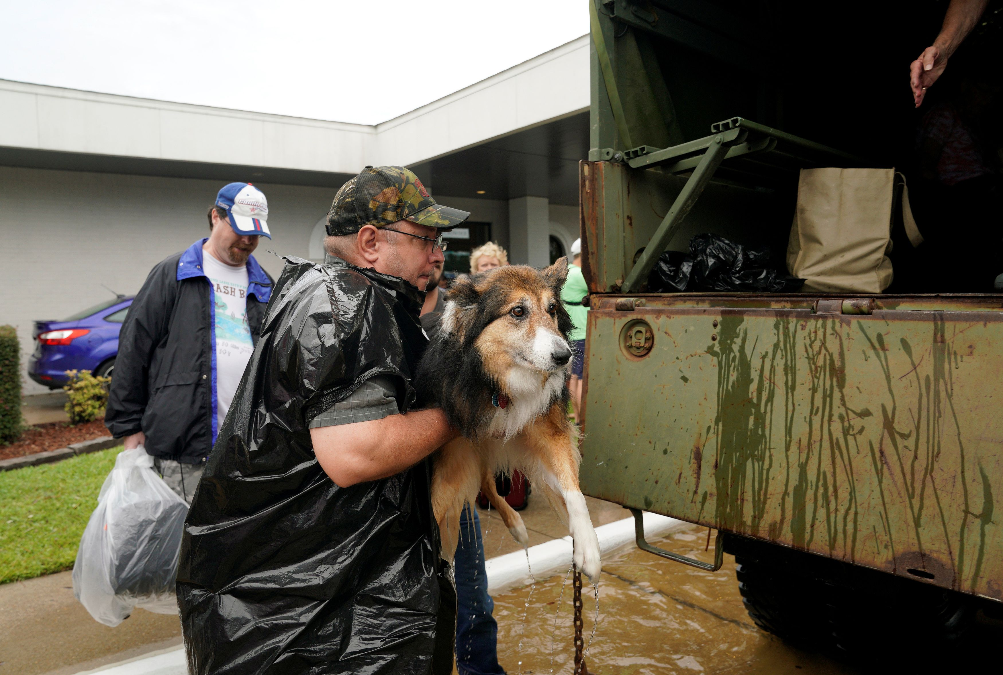 Houston pets have no ark to save them Animals, Pets