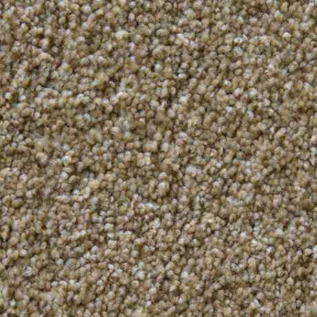Best Toast Texture Petprotect® Carpet Stainmaster® How To 400 x 300