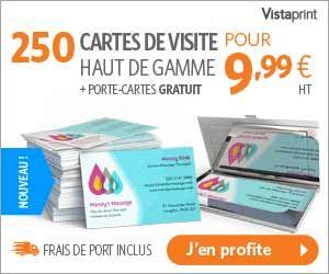 VistaPrint 250 Cartes De Visite Haut Gamme Porte Gratuit Pour Moins
