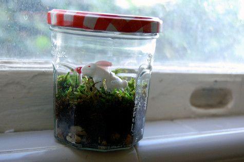 Miniature Terrarium Jar Trends Wedding Terrariums Pinterest