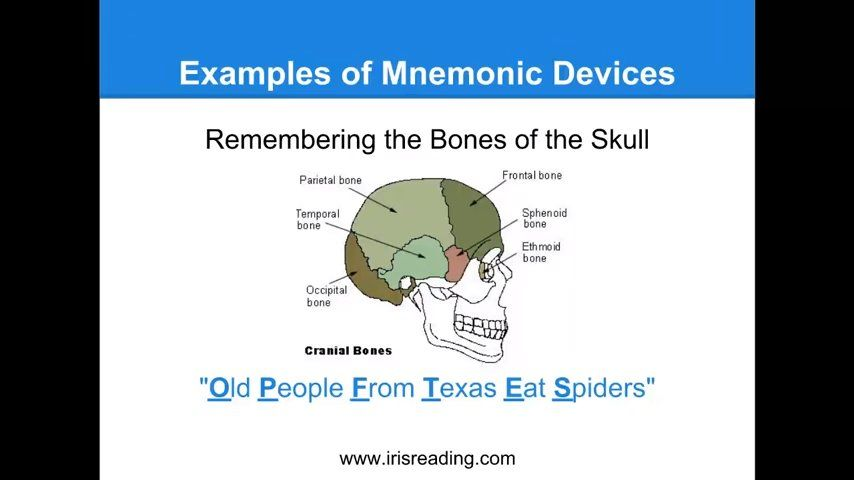 Mnemonic device: How to remember the bones of the skull (OLD PEOPLE ...