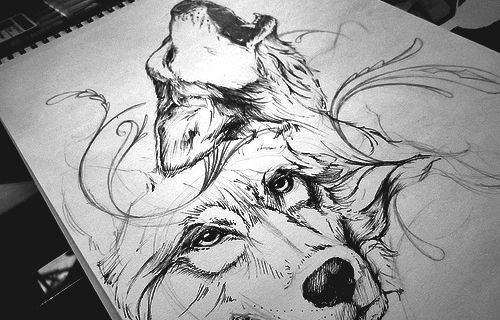 Lineart Wolf Tattoo : Animal art tumblr pinterest wolf sketch and