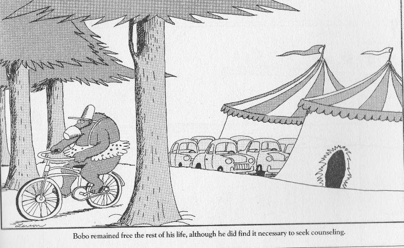 Jimmy Gary Larson Far Side Cartoons