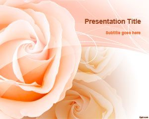 Free peach roses powerpoint template free powerpoint templates free peach roses powerpoint template free powerpoint templates toneelgroepblik Choice Image