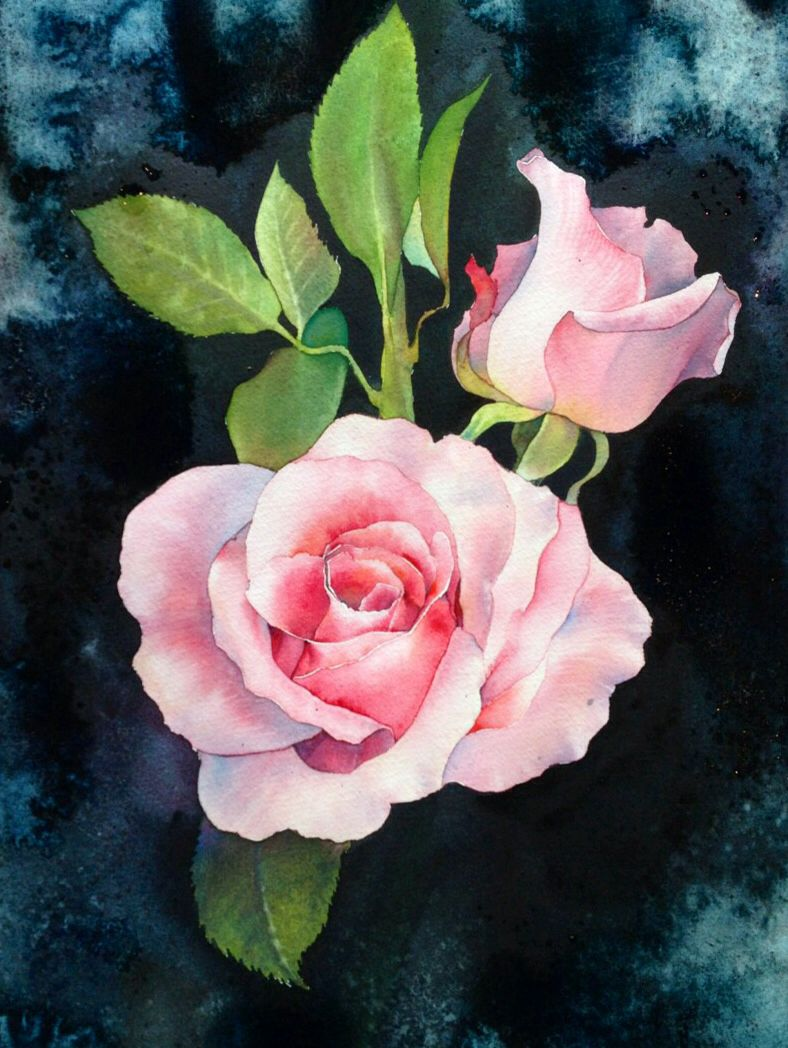 Rose In Romantic Watercolor By Lafe Thailand Flower Painting