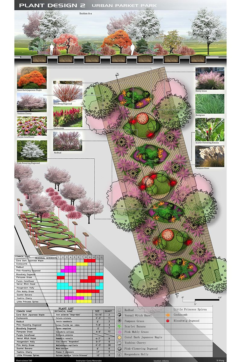 Lar 540 planting design 3 cr analysis of plant forms for Form garden architecture