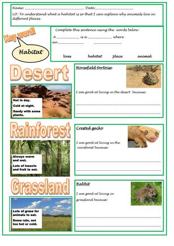 Understanding habitats and adaptation for KS1 Habitats
