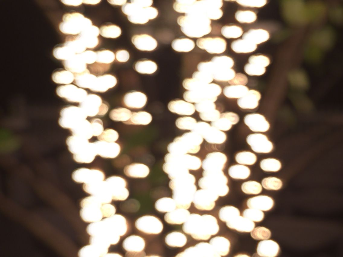 Taken with a slow shutter speed... Pretty good for a first try at bokeh! Photo Credit: Kristin Daly #iyl2015