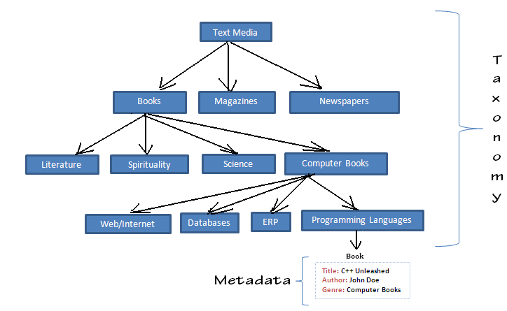 ecm taxonomy example - google search taxonomy versus metadata