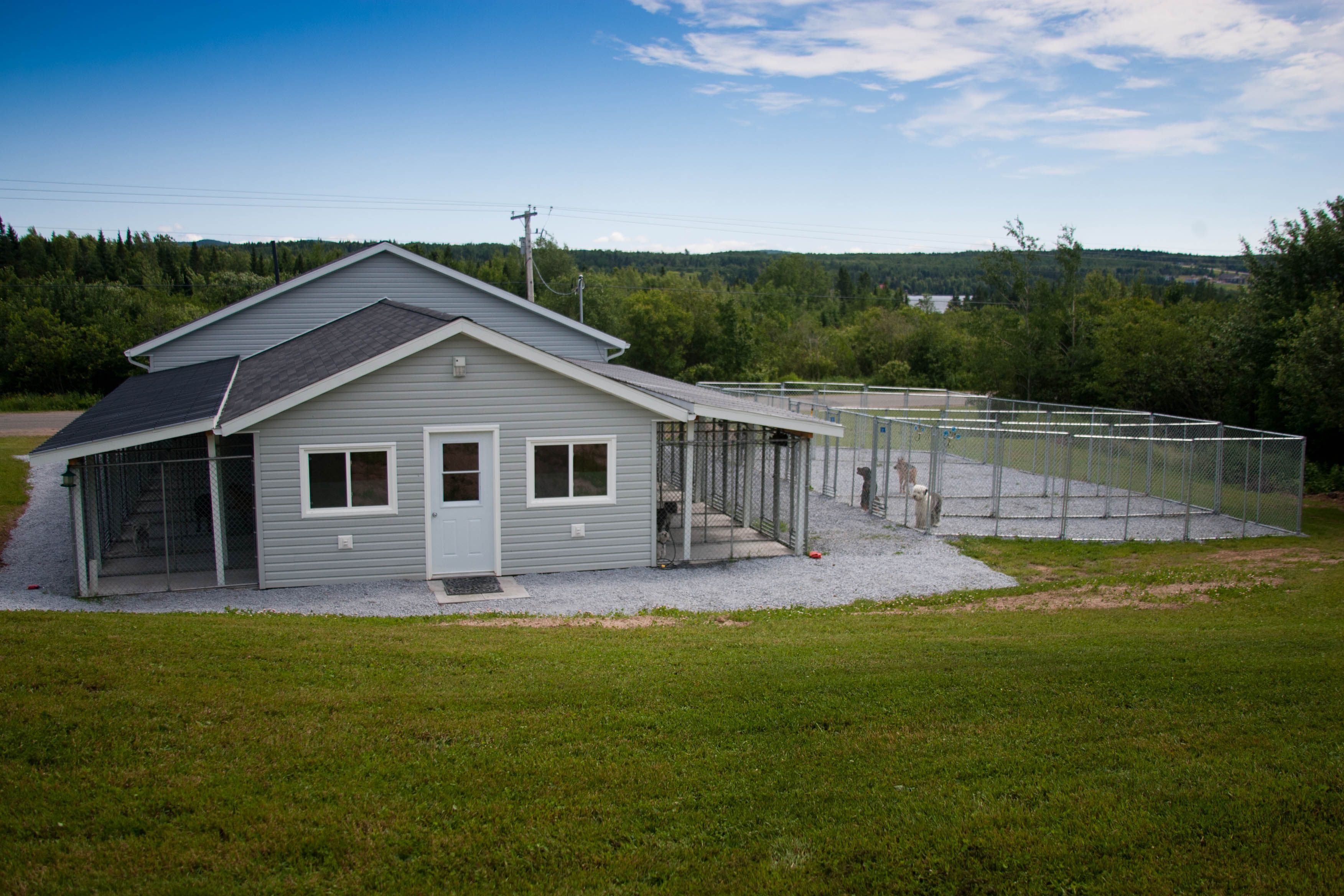 Pictures of cassidy lake boarding kennel dog breeding for Breeding kennel designs