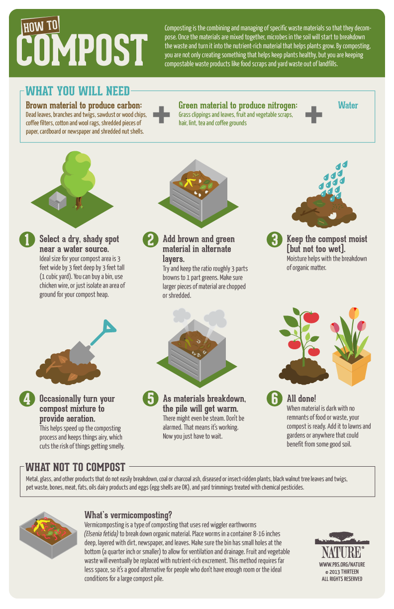 How To Compost Poster Pbs Nature Garden Compost Compost Plants