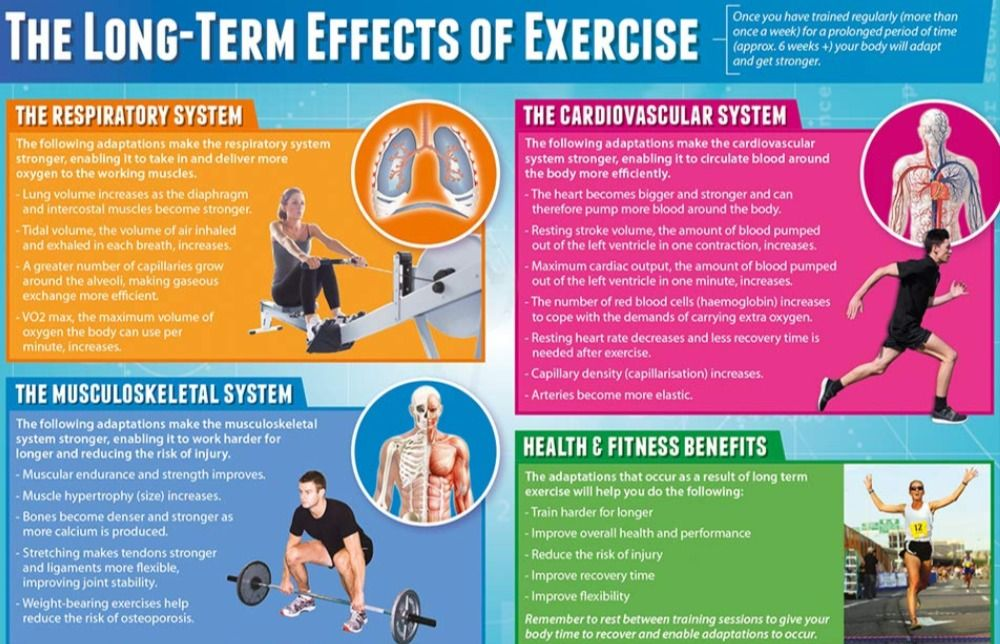 Pin by Healthy Swami on Massage Therapist | Cardiovascular ...