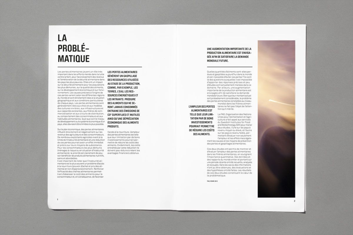 Mise en page magazine graphique gaspillage alimentaire for Architecture graphique