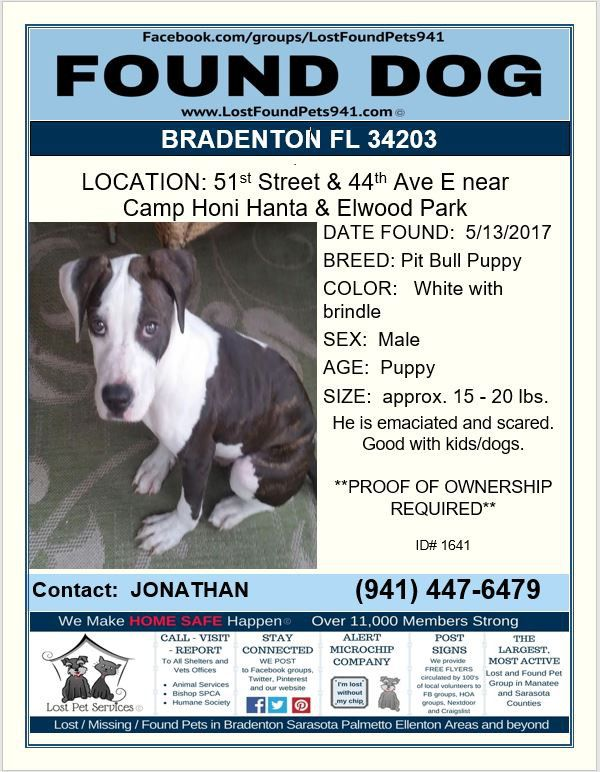 Do You Know Me Service Animal Losing A Pet Pitbull Puppies