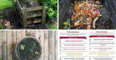 Prepara tu propio abono orgánico: ¡justo lo que tus plantas necesitan!