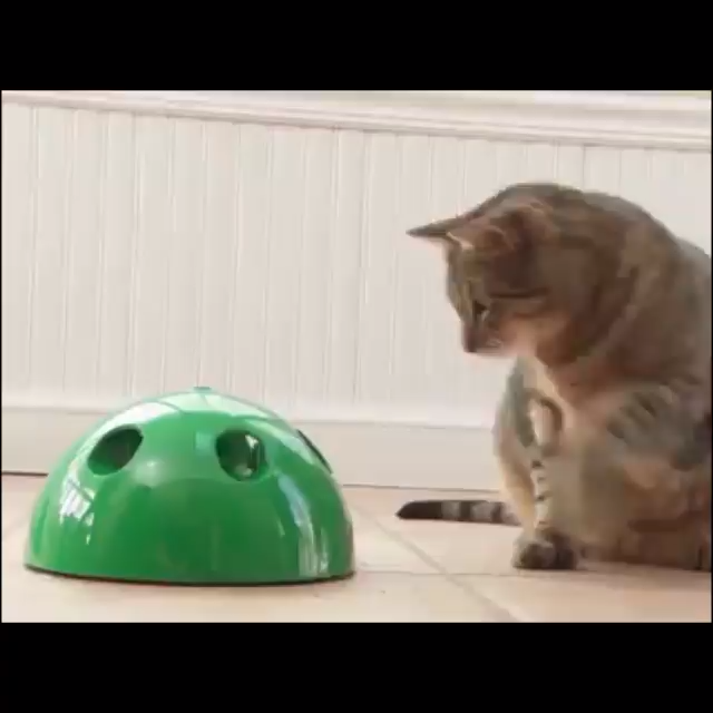 Funny Cat Interactive Toy At Scratching Device For Cat Sharpen