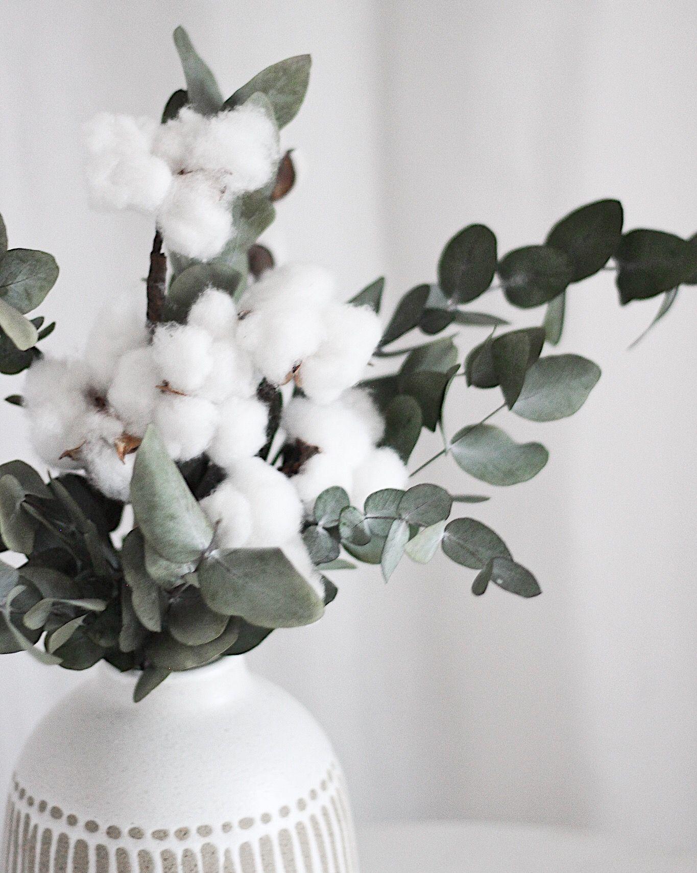 Eukalyptus und Baumwolle: frische, langlebige Kombination