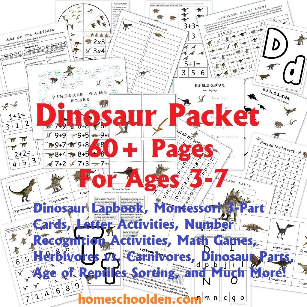 Dinosaur Packet And Lapbook