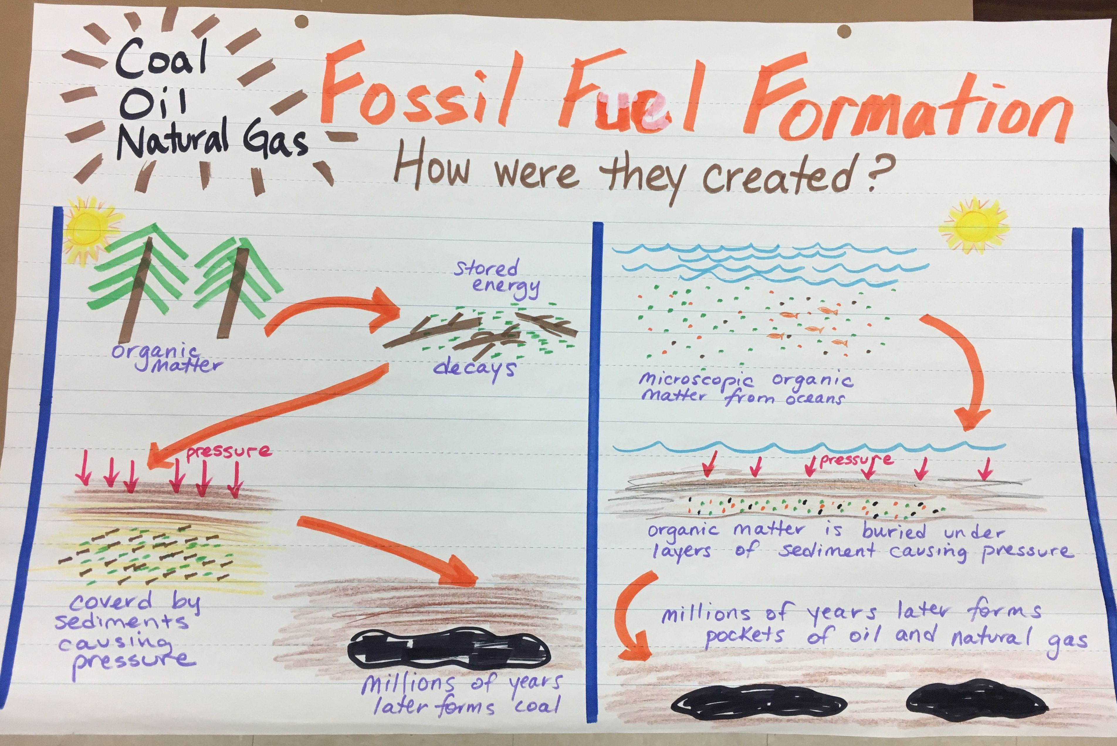 Fossil Fuel Formation Coal Oil Natural Gas 5th Grade Science Teks Science Teks 5th Grade Science Science Anchor Charts