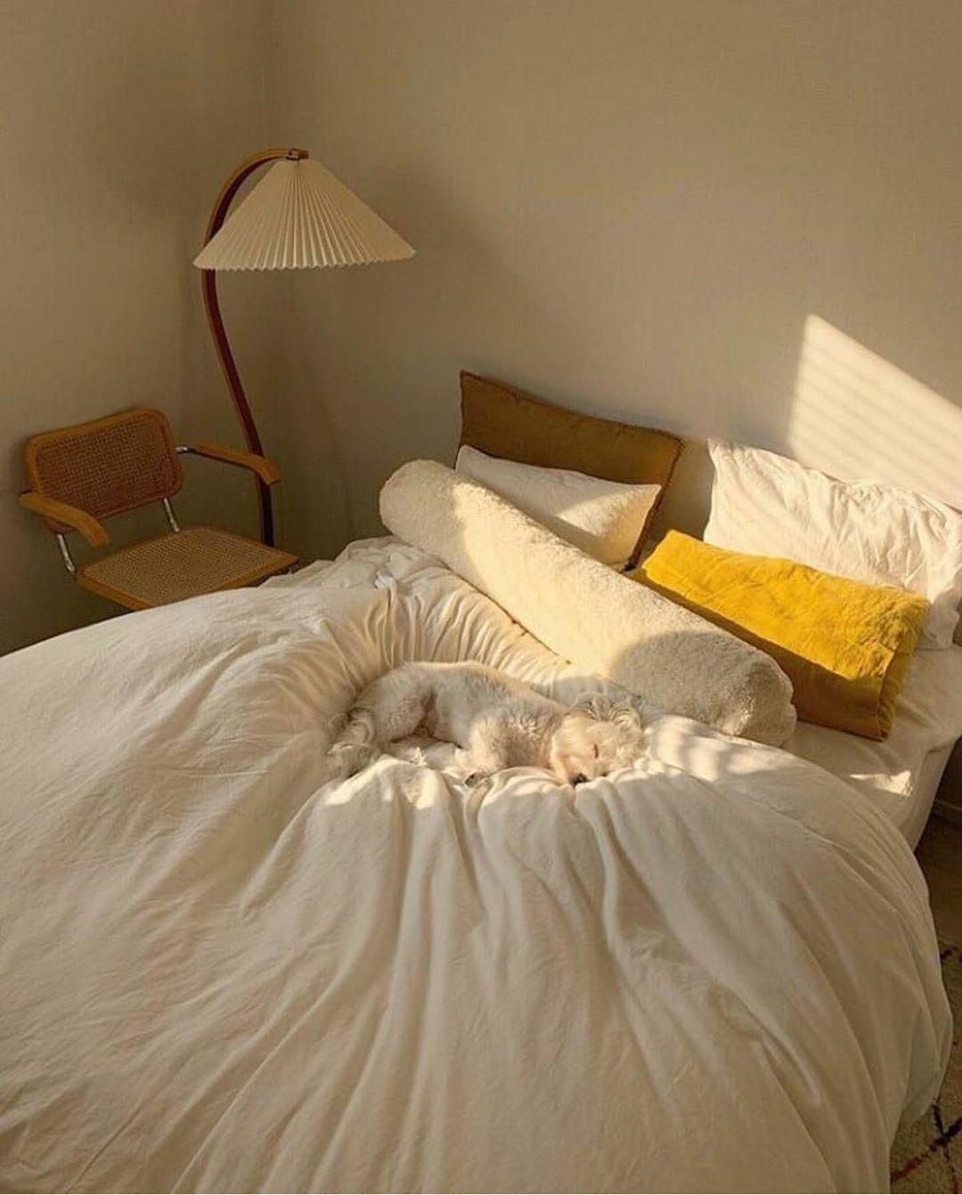 48+ Authentic room decor information