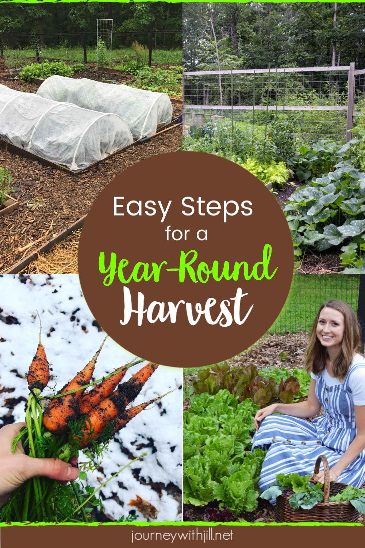 Plan A Year Round Harvest For Your Garden The Beginner S Garden