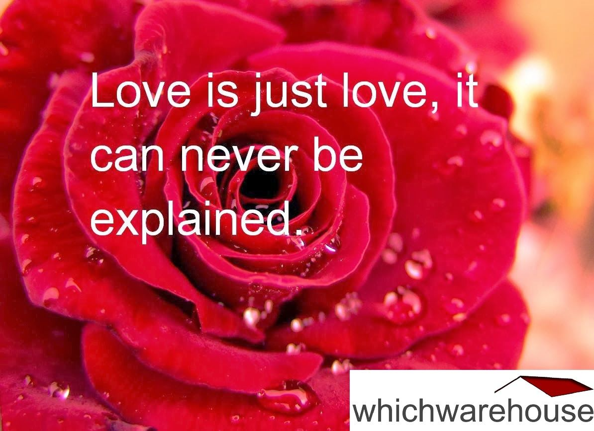 Valentines Day Quotes For Girlfriend Pinwhichwarehouse On Quotes  Pinterest