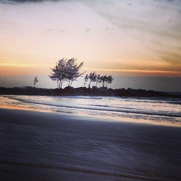 Praia Do Ouvidor Em 2019 Pousada Demarchi Praia Praia Do Rosa