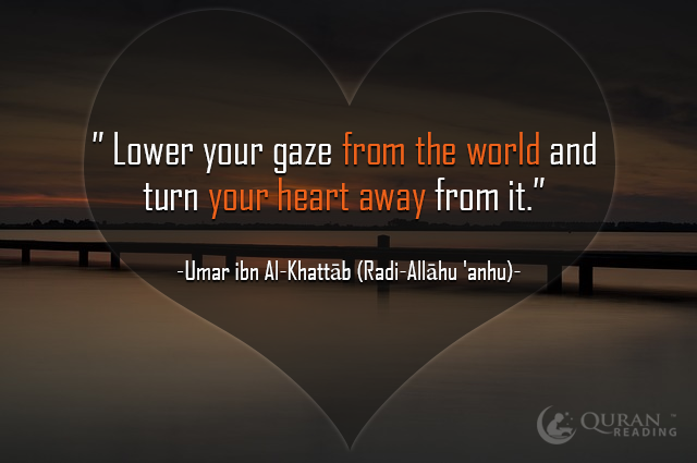 """Lower your gaze from the world and turn your heart away from it."""" - Umar ibn Al-Khattāb (Radi-Allāhu 'anhu)"""