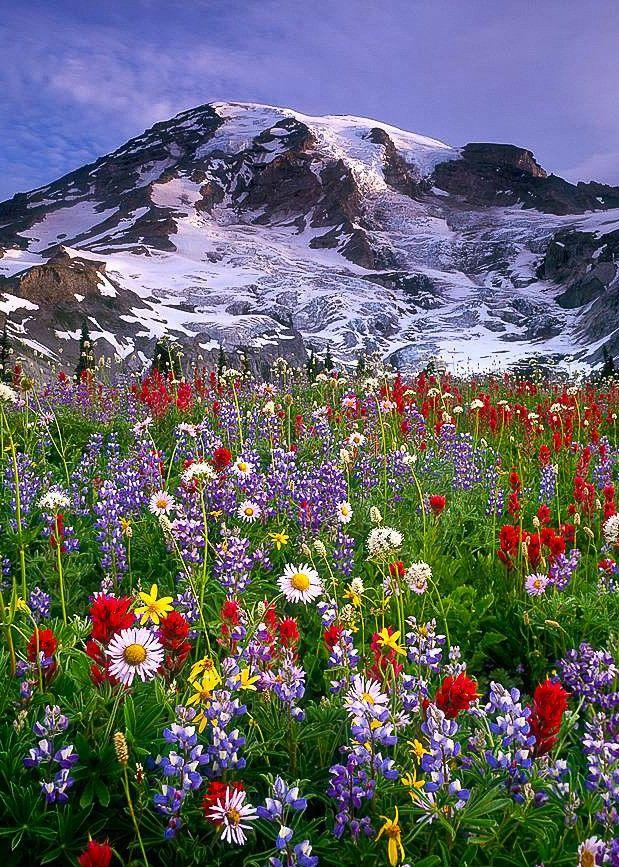 Весна в горах картинки вертикальные