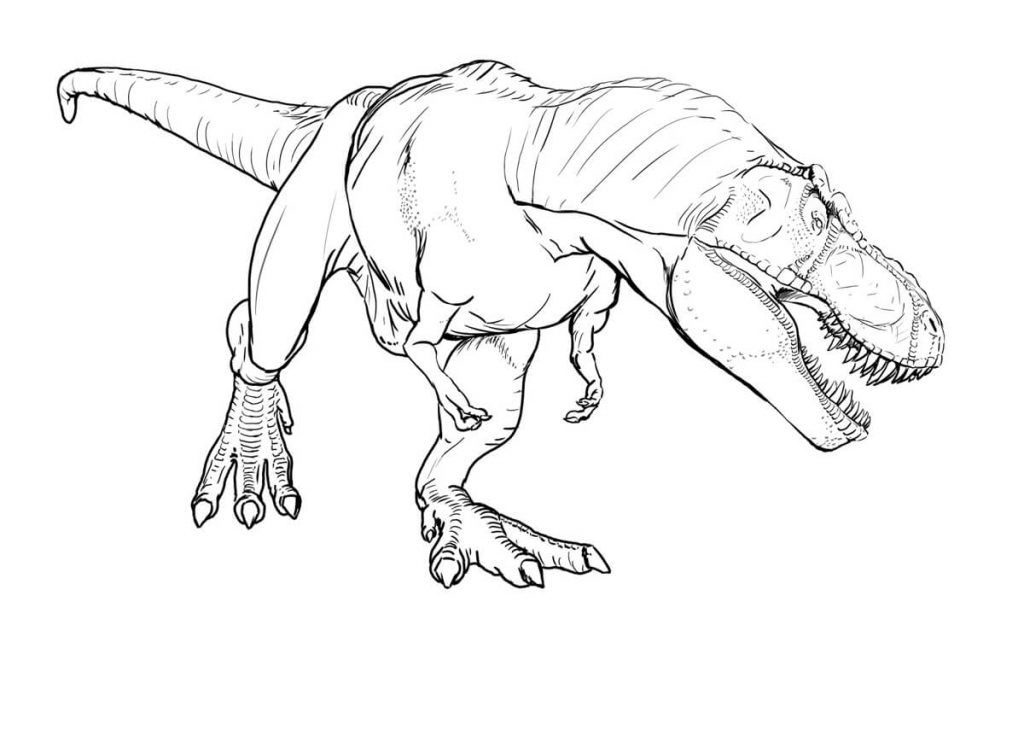 Dinosaurio Para Colorear Para Para 2 Saurios Para Online: Dibujos De Dinosaurios Para Colorear Gratis