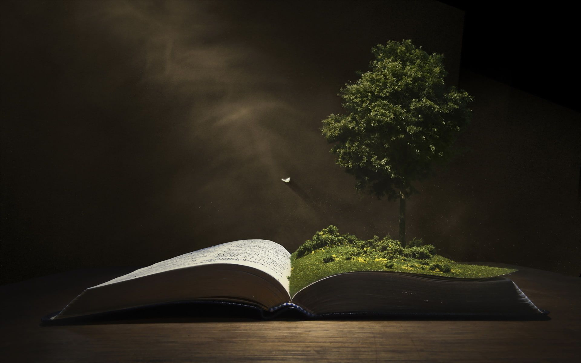 White Book Page Background Tree Book 1080p Wallpaper Hdwallpaper Desktop Book Wallpaper Book Background Background