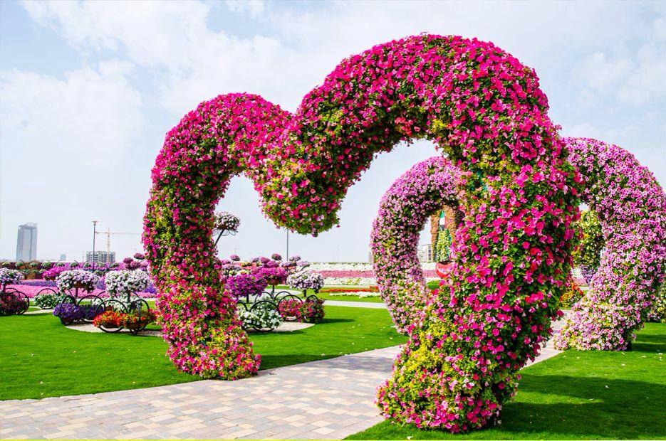 Hearts flowers / Dubai miracle garden